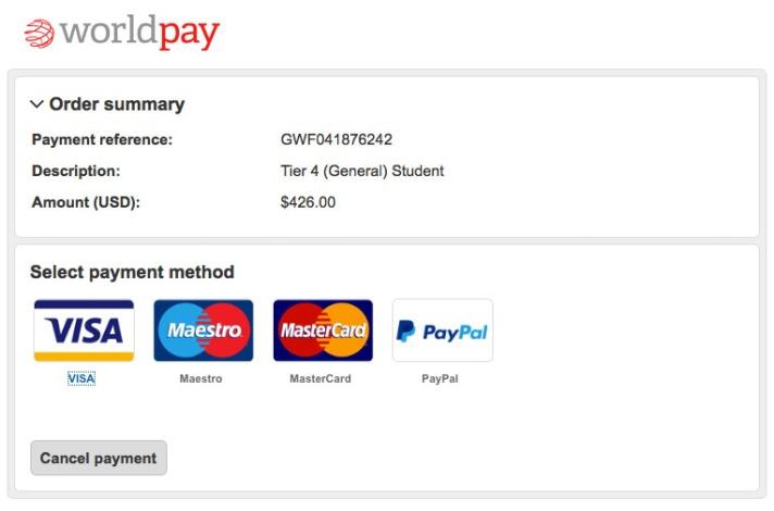 visa-payment4